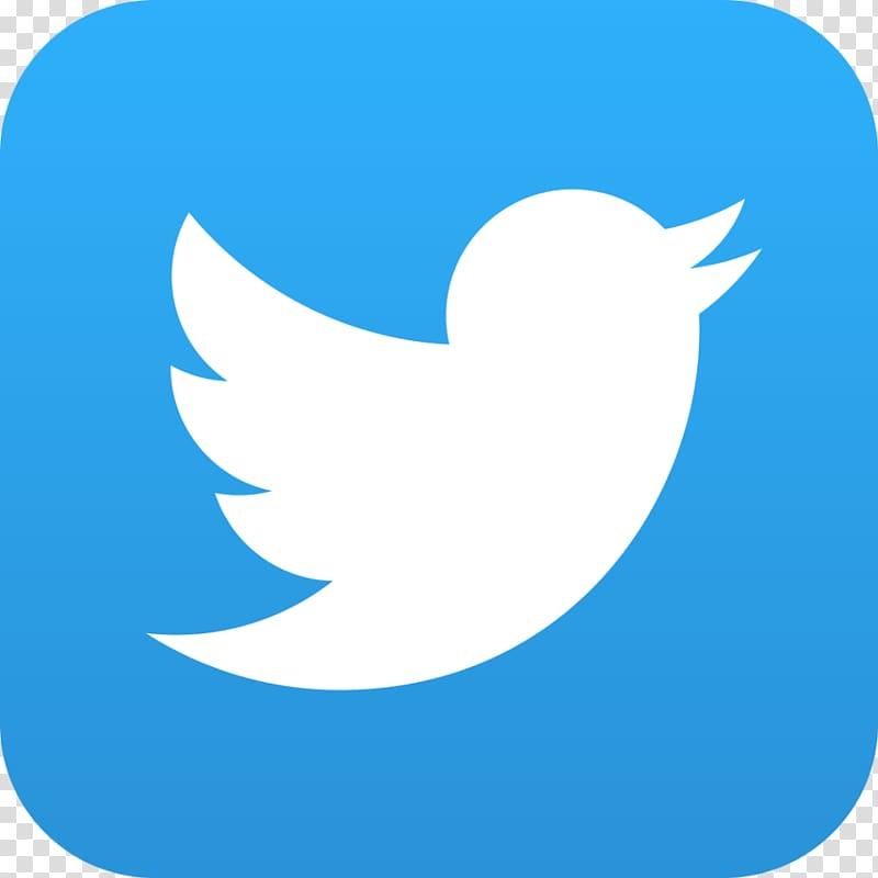 Social media Logo Computer Icons Information, twitter.