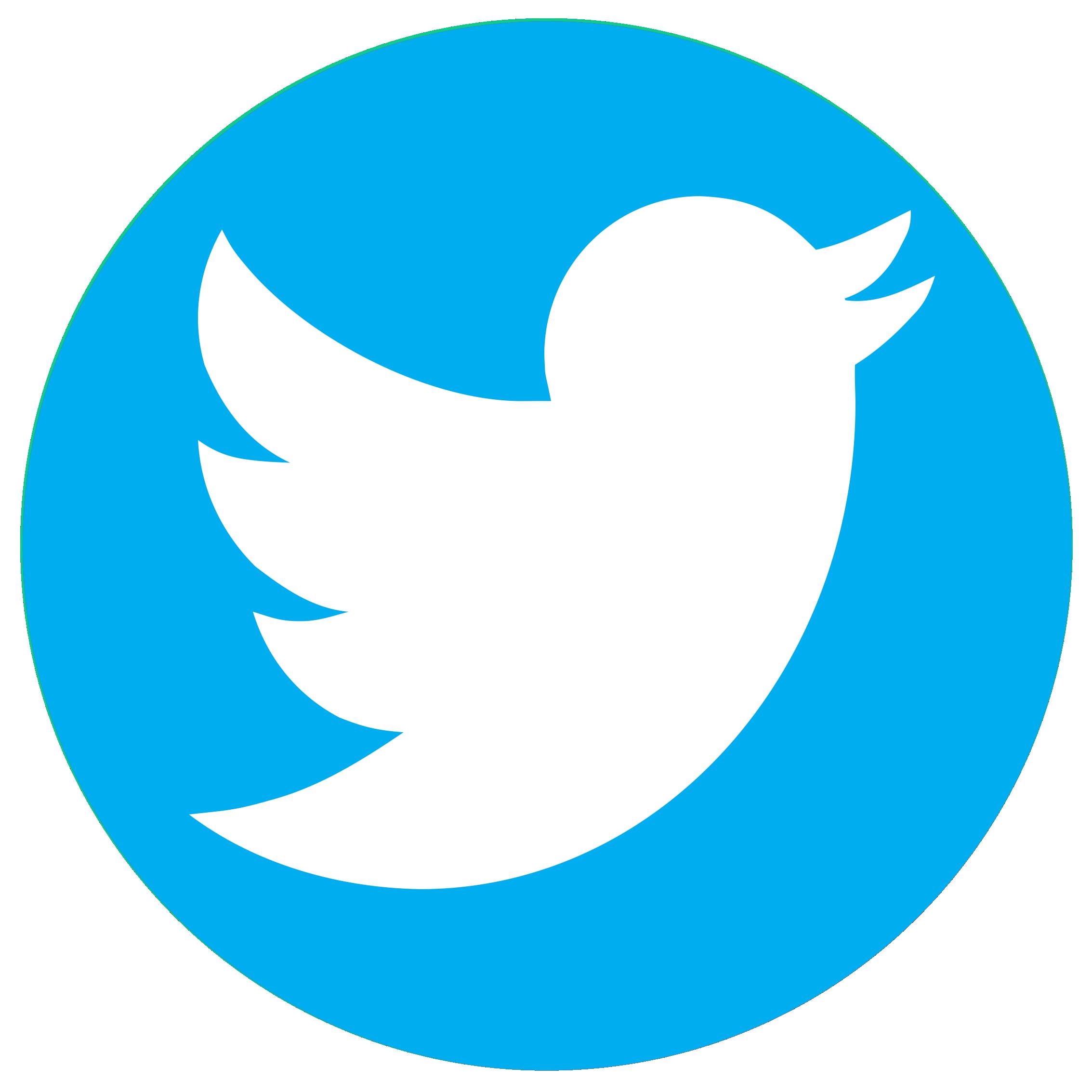 Logo Twitter Circle PNG Transparent Image #47449.