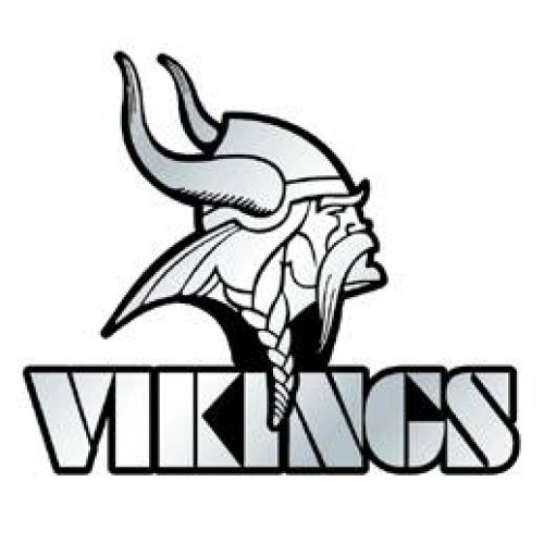 Nfl Minnesota Vikings.