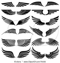 16 Best Wings Logo images.