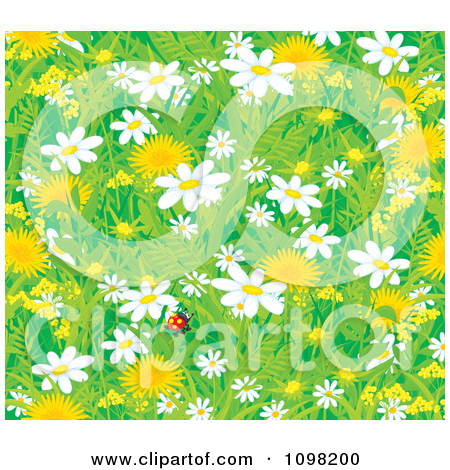 Clipart Background Of A Lone Ladybug With Spring Dandelion And.