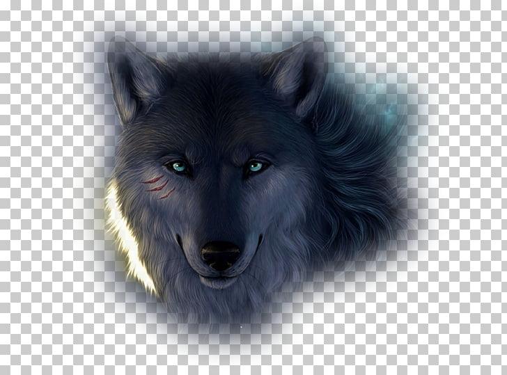 Lone wolf Mobile Phones Pack Stiles Stilinski Art, others.