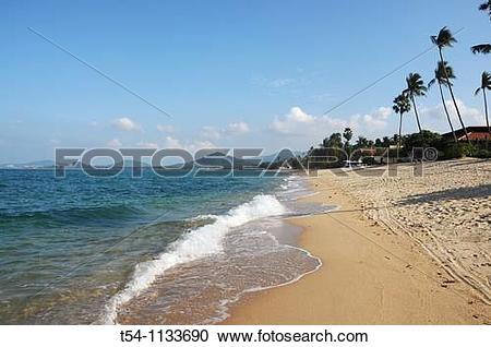 Stock Photography of Lonely Beach on Ko Samui Island t54.