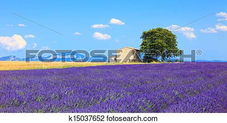 Clipart picture of plateau with tree and house.