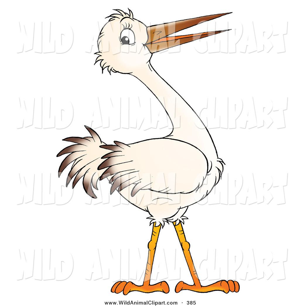 Bird Beak Clipart.
