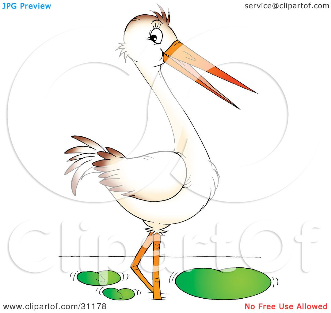 Clipart Illustration of a Wading White Bird With A Long Beak by.