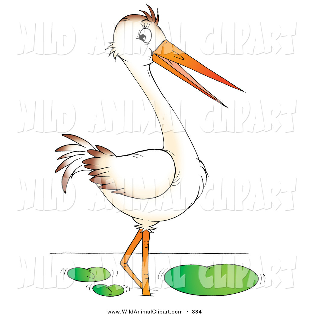 Bird Beak Clipart.