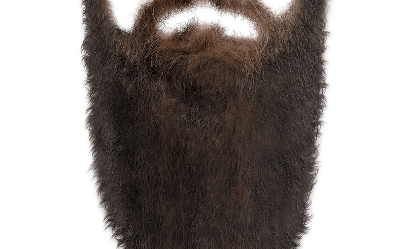 Beard Png (96+ images in Collection) Page 1.