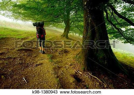 Stock Photo of Collado de Zaldegi, GR11 long distance footpath.