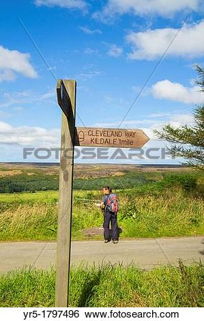 Stock Images of Female hiker on The Cleveland Way National trail.