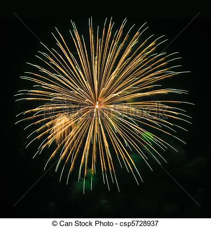 Picture of Very high quality firework with long exposure time.