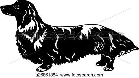 Clipart of , animal, breeds, canine, dachshund, dog, longhair.