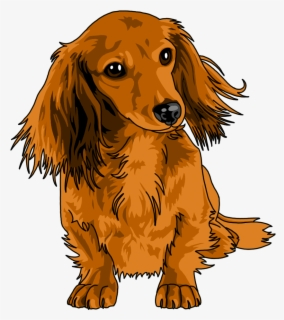 Free Dachshund Clip Art with No Background.