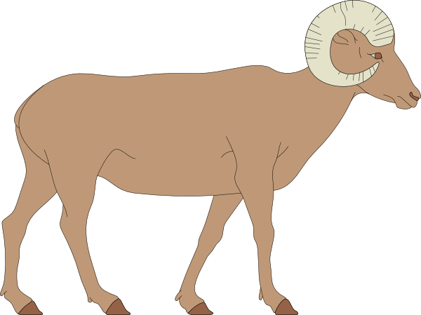 Walking Bighorn Sheep Clip Art at Clker.com.