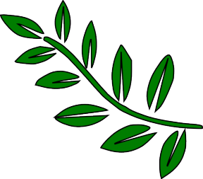 Willow Leaves Clip Art.