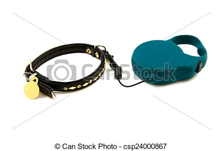 Stock Image of Collar for a dog.