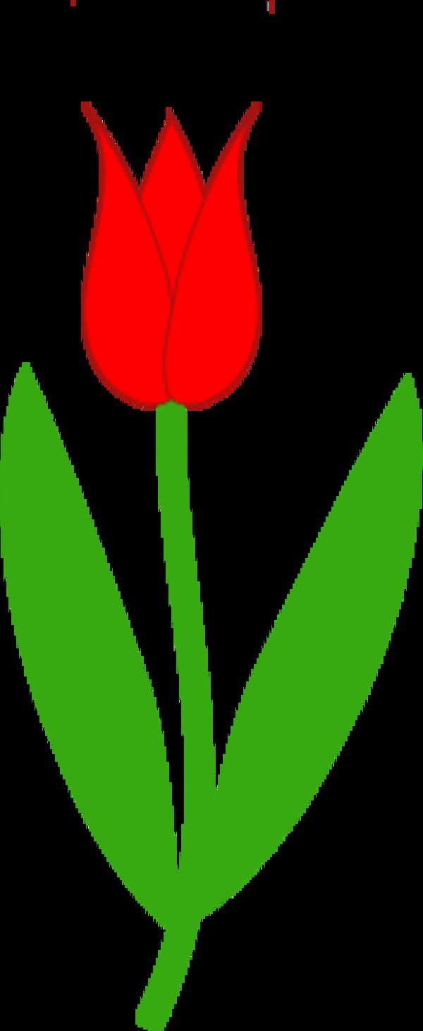 Tulip Clip Art Leaves.
