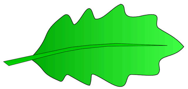 Oak Leaf Clip Art & Oak Leaf Clip Art Clip Art Images.