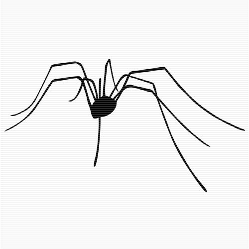 Daddy Long Legs Spider Clip Art.