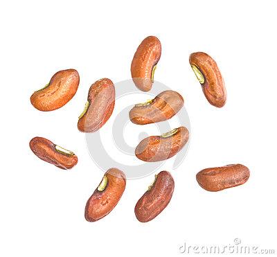 Yard Long Bean Seeds Stock Photo.