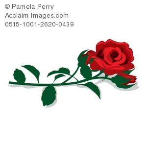 long stem rose clipart & stock photography.