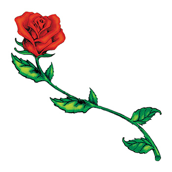 Long stem roses clipart 5 » Clipart Station.