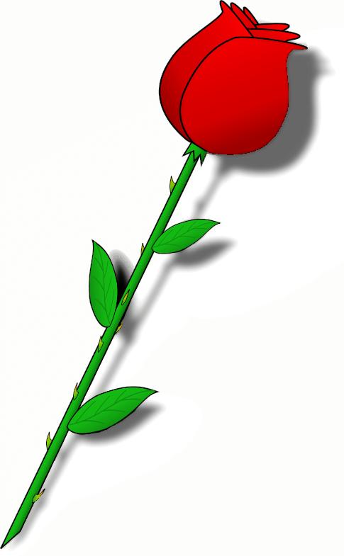 Long stem roses clipart 3 » Clipart Portal.