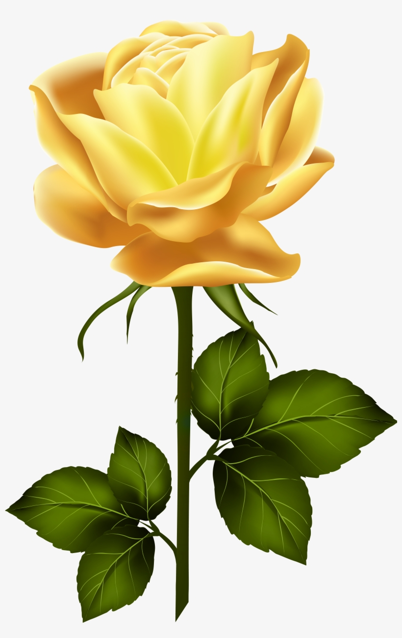 Clipart Roses Yellow Rose.
