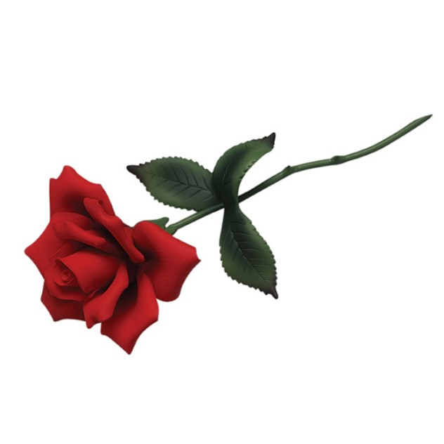 Picture Of Red Rose With Stem.