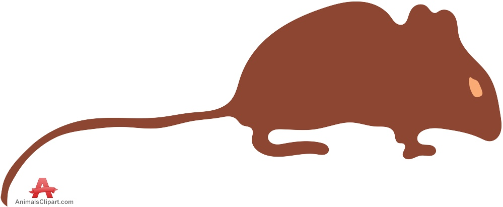 Brown Mouse with Long Tail.