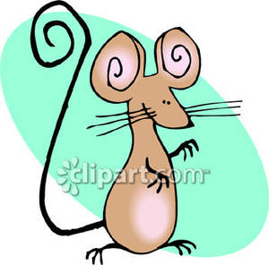 Mouse With A Long Tail.