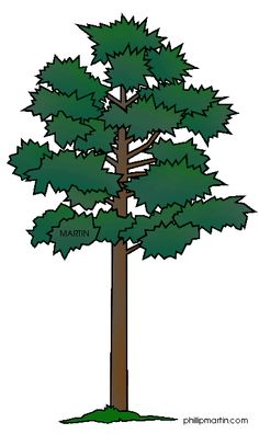 Similiar Georgia State Tree Live Oak Leaf Clip Art Keywords.