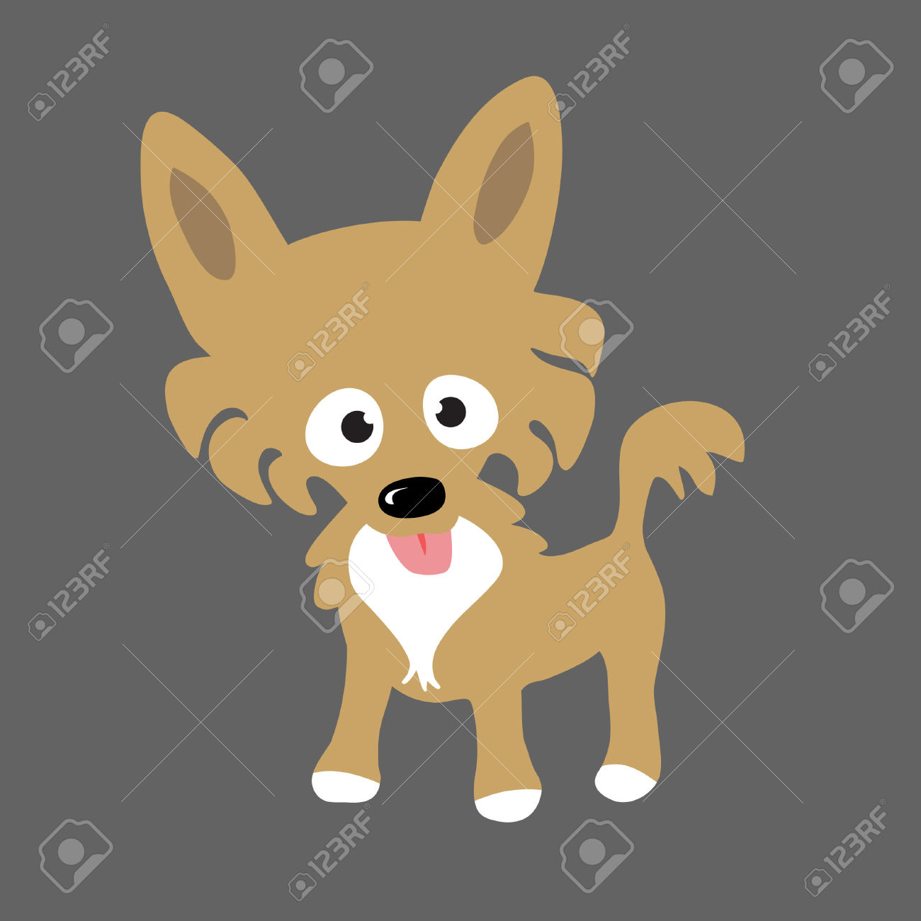 Long Hair Chihuahua Royalty Free Cliparts, Vectors, And Stock.