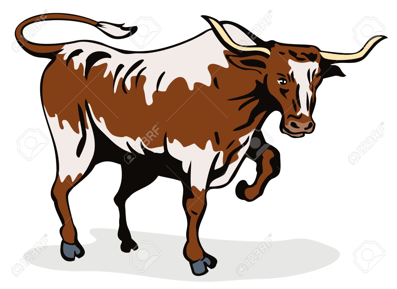 Longhorn Cattle Cliparts.