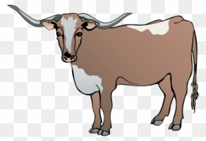 Download Free png Longhorn Cattle Clipart Drawing Cow Vector.