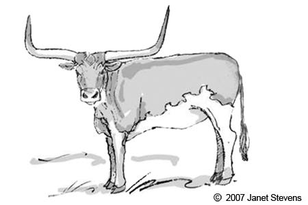 Texas Longhorn Clipart.