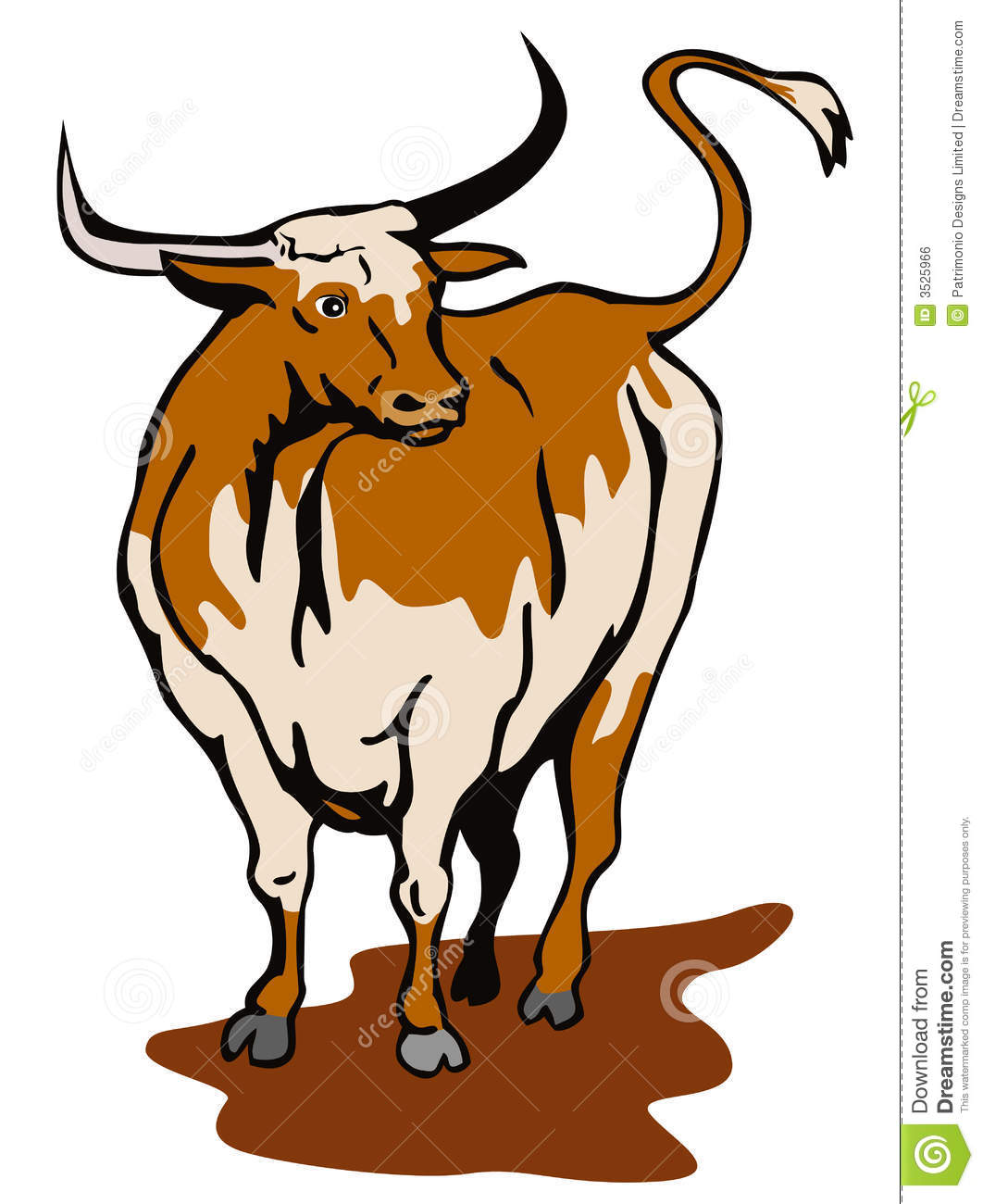 Texas Longhorn Bull Royalty Free Stock Image.