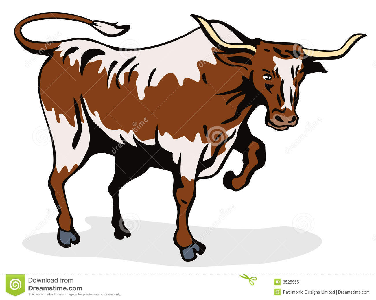 Longhorn Stock Illustrations.