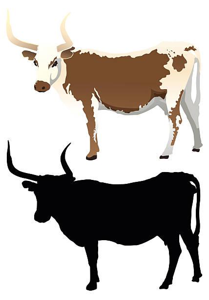 Longhorn Cattle Clipart.