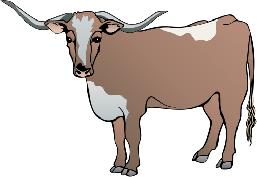 390 Longhorn free clipart.