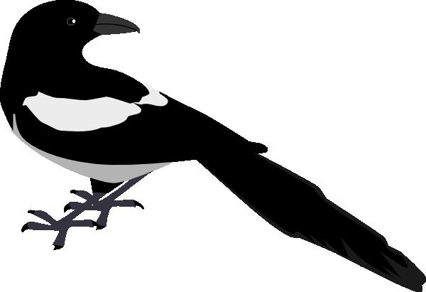 Magpie Looking Back Clip Art at Clker.com.