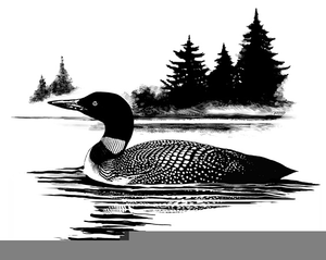 Clipart Loon.