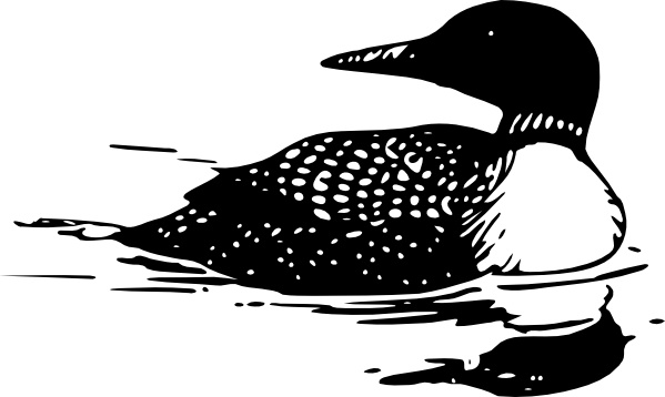 Common Loon clip art Free vector in Open office drawing svg.