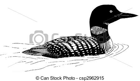 Loon Stock Illustration Images. 49 Loon illustrations available to.