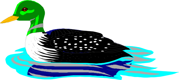 Water Loon Clipart.