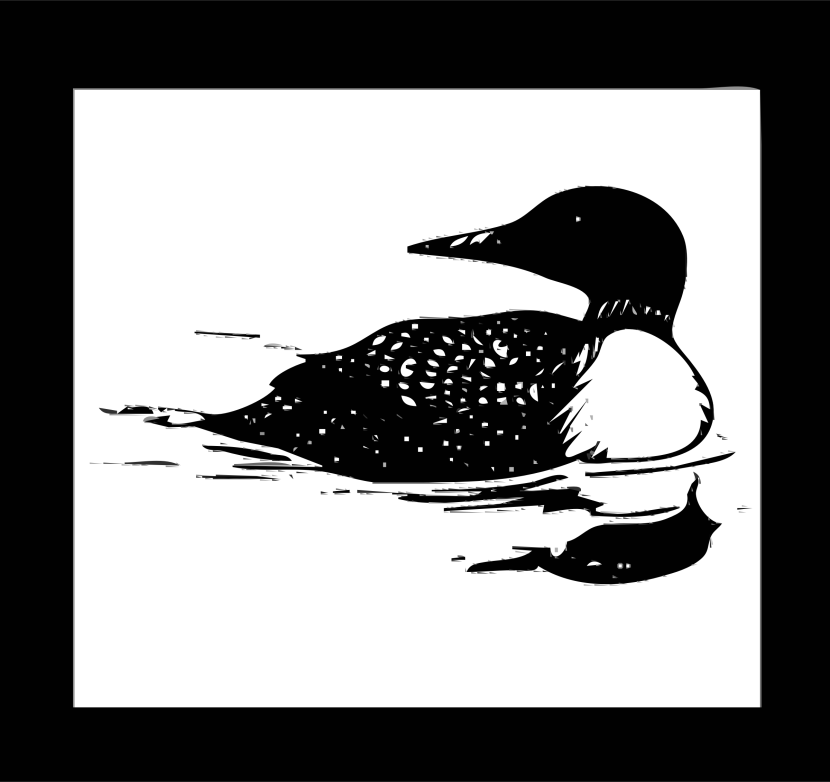 Best Loon Clip Art #13356.