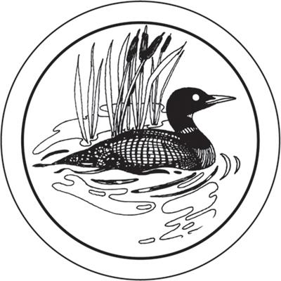 Minnesota Loon Clipart.