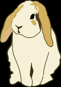 Lop Eared Rabbit Clip Art at Clker.com.