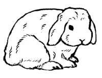 Rabbit Silhouette Cliparts.