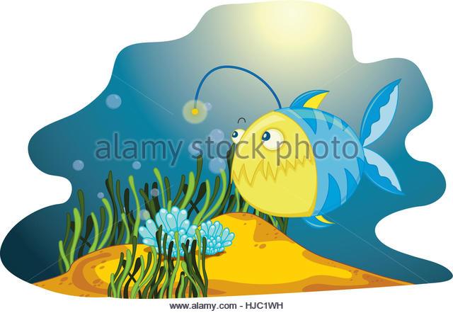 Deep Sea Anglerfish Stock Photos & Deep Sea Anglerfish Stock.